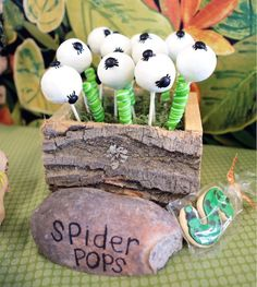 Bug + Insect Birthday Party via Kara's Party Ideas | Spider Pops