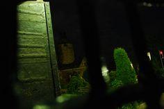 """arriving at night - breathtaking view ..."" - http://www.tripadvisor.com/ShowUserReviews-g2427055-d2453130-r142741766-Zamek_Czocha-Lesna_Lower_Silesia_Province_Southern_Poland.html"