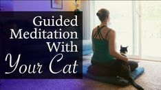 Meditation with pets is a rewarding experience for all participants. The following is a meditation story and an experiment for pet owners. Teacher Hacks, Yoga Teacher, Pet Dogs, Dog Cat, Pets, Meditation Techniques, Wellness Center, Guided Meditation, Student