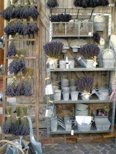 Lavender, lavender everywhere!!!