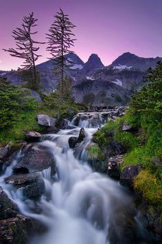 purple and green hues, the white noise of the stream, i would love to be there right now.