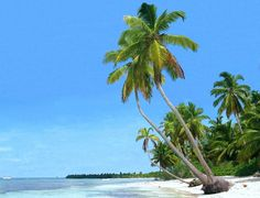 Saona Island - Dominican Republic