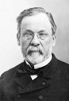 Louis Pasteur ( 1822 - 1895), French chemist and microbiologist who was one of…