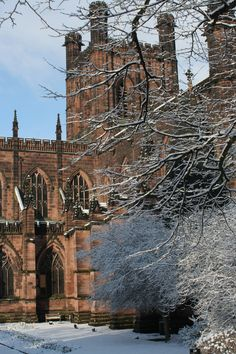 Find out what's happening in Chester and Cheshire this Christmas Chester Cathedral, Cathedral Church, Chester City Centre, Christmas In England, Chichester, Hereford, Westminster Abbey, Peterborough, Exeter
