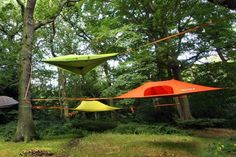 Tentsile Stingray tree tent - the ultimate tree house. Bushcraft, Suspended Tent, Tent Platform, Tree Camping, Camping Ideas, Tree Tent, Waterproof Tent, Cool Tents, Amazing Tents