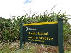 Kapiti island, off the lower North Island, near Wellington