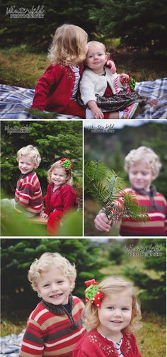 Christmas in the Northwest | Winterfeld Photography | covington wa