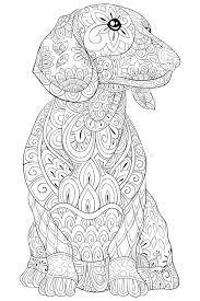 Mandalas Con Animales Para Imprimir Mandalas Animales
