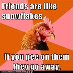 Anti-Joke Chicken – Unless They're Into That