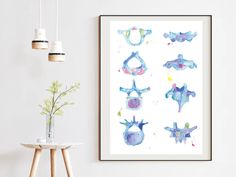 Vertebrae Anatomy Art Print, Chiropractic and Physical Therapy Wall De – medpapers Vértebra Cervical, Human Anatomy Art, Medical Gifts, Office Art, Office Ideas, Chiropractic, Physical Therapy, Fine Art Paper, Physics