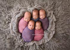 sesion-fotos-quintillizos-recien-nacidos-kim-tucci (5)