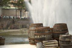 Ron de Cuba Photo Portrait, Ron, Cuba, Beer, Tableware, Photo Black White, Colors, Root Beer, Ale