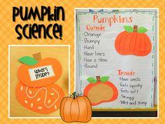 Mrs. Ricca's Kindergarten: Pumpkins Unit FREEBIE & Halloween Centers