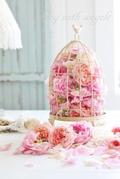 What I did with my bird cage when I got my cat. Laughing With Angels Estilo Shabby Chic, Shabby Chic Style, Rose Cottage, Shabby Cottage, Parisian Baby Showers, Shabby Chic Crafts, Rose Decor, Bird Cages, Everything Pink