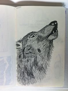 Canis lupus in JOurnal @Suzan van Delft