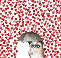 How I feel on Valentine's day.
