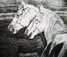 Namibian Wild Horses - Chalk on Black Board by Vincent Kennard