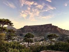 Glorious Table Mountain  #tablemountain #devilspeak #sunset #flora #city #blueskies #clouds #glow #12apostles by al_ice_s http://ift.tt/1ijk11S