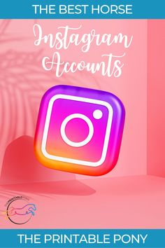 Looking for horse content and inspiration on Instagram? Here are the best horse Instagram accounts you need to follow for horse care tips, horse ideas, and horseback riding hacks. Horse Pictures, Great Pictures, Horse Care Tips, Reining Horses, Hunter Jumper, All The Pretty Horses, One And Other, Horseback Riding, Instagram Accounts
