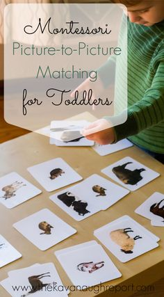 Picture-to-picture matching is a great, simple activity for a Montessori toddler. This is the final type of matching work for toddlers in the Montessori curriculum.