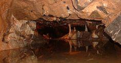 Homens das cavernas comiam uns aos outros e usavam crânios como tigelas
