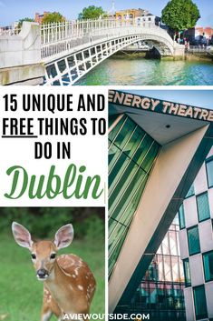 There are so many cool and unique activities in Dublin, Ireland and most of them are free! Check out this post where you will find all of the coll, FREE things to do in Dublin that you'll absolutely love. Things to do in Dublin Ireland Destinations, Ireland Travel Guide, Dublin Travel, Europe Travel Guide, Travel Destinations, Asia Travel, Travel Guides, Travel List, Travel Packing