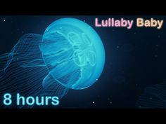 ☆ 8 HOURS ☆ UNDERWATER SOUNDS with MUSIC ♫ ☆ Relaxing Lullaby Baby Sleep Music - YouTube