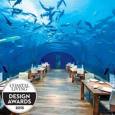 Ithaa Undersea Restaurant, a 2015 Coastal Living Design Awards winner | Coastalliving.com