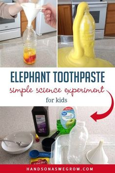 Exciting elephant toothpaste science experiment for kids that is sure to bring amazement! Perfect for your little scientist at home. Watch what will happen! Kid Experiments At Home, At Home Science Experiments, Science Projects For Kids, Science Crafts, Science Party, Preschool Science, Science Fair, Science For Kids, Activities For Kids