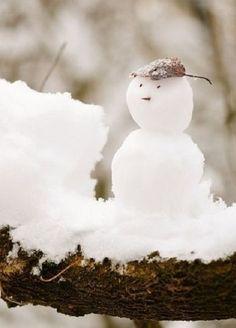 ** winter **