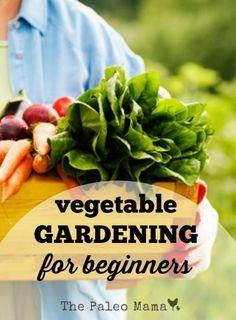 Vegetable Gardening for Beginners http://thepaleomama.com/2015/07/vegetable-gardening-for-beginners/