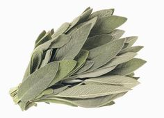 How to Burn Sage to Cleanse Homes. (Also used for positive energy -M)