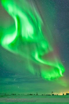 Aurora - Feb 3-4, 2014 (Orion & Curtains) | by Amazing Sky Photography