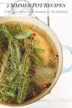 I love having a simmer pot in my home for the holidays, it makes everything smell amazing! 3 great simmer pot recipes here!