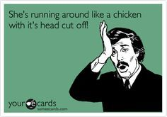 Southern Saying: She's running around like a chicken with it's head cut off!