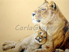 Award winning, luxury wildlife artwork by Carla Grace Art. Australia based artist Carla Grace paints breathtaking realistic wildlife paintings of animals from all over the globe. Wildlife Paintings, Wildlife Art, Lioness And Cubs, Grace Art, Predator, Colored Pencils, My Arts, Canvas, Colouring