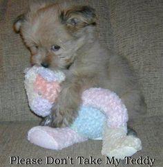 Please don't take my teddy.