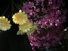 通路に吊るしてあるお花。 ドライフラワーになっています♪  Dry Flower.