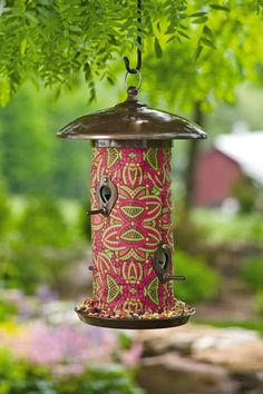 How To Attract Birds To A Feeder On An Apartment Balcony