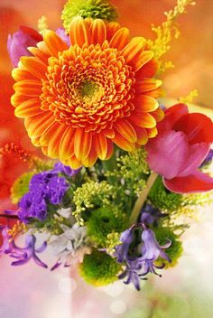 Decent Image Scraps: Flowers 4
