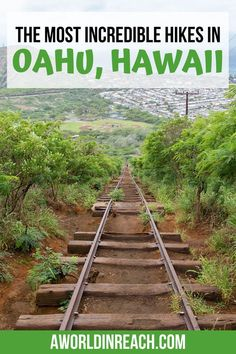 Beautiful Oahu, Hawaii is a hiker's paradise. Wondering about the best hikes in Oahu? Check out this guide to the best Oahu hikes for all skill levels! Hawaii Hikes, Oahu Hawaii, Hawaii Travel, Travel Usa, Beach Travel, Honolulu Zoo, Canada Travel, Spain Travel, Travel Guides