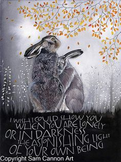 I wish I could show you when you are lonely or in darkness the astonishing light of your own being. Hare Illustration, Sam Cannon, Bunny Art, Bunny Bunny, Rabbit Art, Calligraphy Art, Animal Quotes, Fantasy Art, Sketches