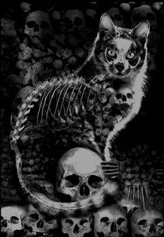 Skull Cat Gothic Print Steampunk kitten feline Skelanimal Tattoo halloween Fine Art Canvas Print Kutna Hora horror Vena Kava on Etsy, Arte Horror, Horror Art, Gothic Horror, Fantasy Kunst, Fantasy Art, Burg Tattoo, Skull Cat, Human Skull, Tattoo Gato