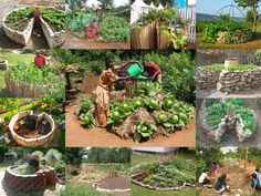 Keyhole Gardens  First made popular in Africa, keyhole gardens are catching on in Texas and other hot, dry places. Keyhole gardens hold moisture and nutrients due to an active compost pile placed in the center of a round bed. Although most helpful in hot and dry locations a keyhole garden will improve growing conditions in just about any climate.