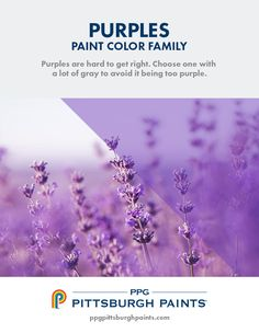 Purple is a majestic color – coming from royalty. It can be inspirational and create a pretty environment that nurtures a sense of balance and purpose. Purple Paint Colors, Wall Colors, Small Office, Bedroom Colors, Tiny Houses, Hue, Color Schemes, Kitchen Ideas, Youtube