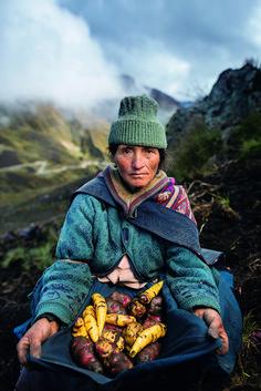 Galería | Producción agrícola en el mundo National Geographic en Español En los Andes peruanos, Estela Cóndor cultiva diferentes papas para venderlas. Pequeños agricultores cultivan muchos alimentos para el mundo en desarrollo.  Foto: National Geographic