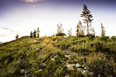 Looking for hiking trails near Deer Valley, Utah. Here are three great options starting from the resort's Silver Lake Village. Go Hiking, Hiking Trails, Deer Valley Utah, Utah Hikes, Vacation Trips, Vacations, Best Hikes, Salt Lake City, Park City