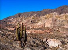 Salta Cardones Grand Canyon, Road Trip, Nature, Travel, Salta, Naturaleza, Viajes, Road Trips, Destinations