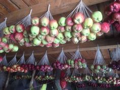 How to Preserve Fruits and Vegetable #fashion #style #art #love #shopping