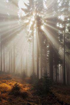 Light Explosion by Martin Rak on 500px